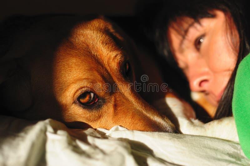 Женщины с собакой стоковые фотографии rf