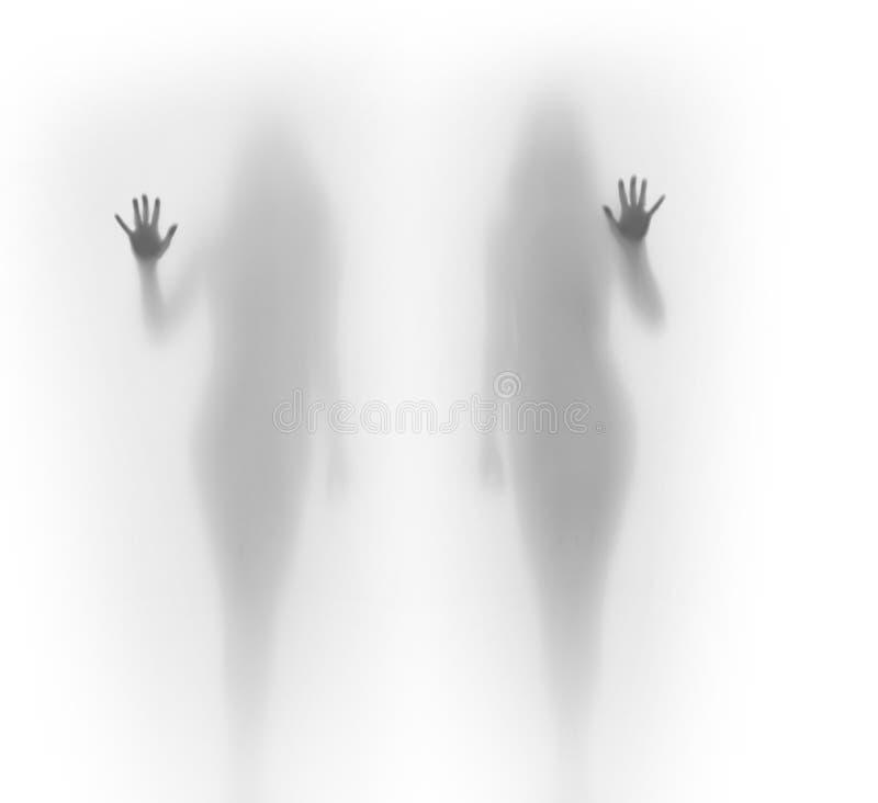 Женщины тела Beautyful идеальные стоят за занавесом, и касаются ему с одной рукой стоковое фото rf