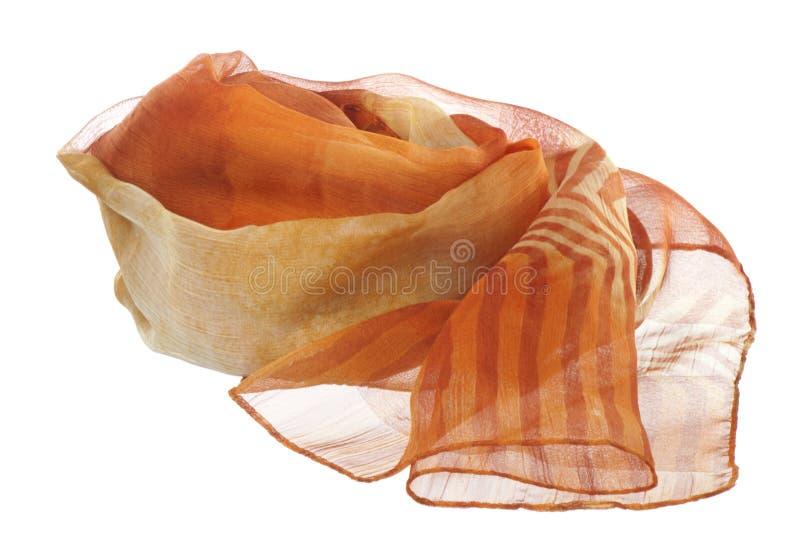 женщины шарфа стоковая фотография