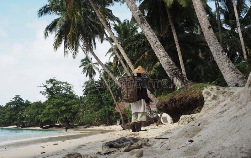 Женщины Mentawai работая в пляже стоковые фото