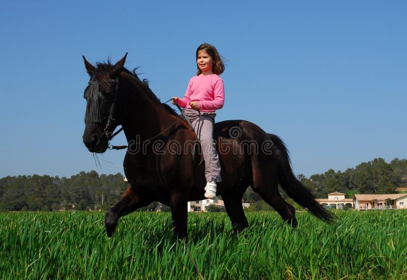 жеребец коричневой девушки маленький стоковая фотография