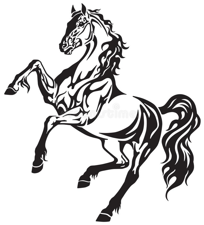 Жеребец лошади в заде бесплатная иллюстрация