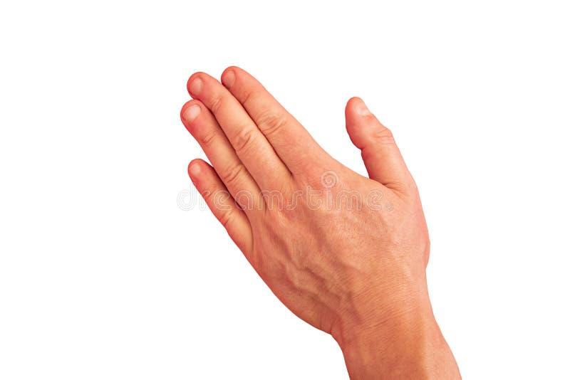 Жест руки человека на прозрачной изолированной предпосылке Открытая ладонь вниз с прямым закрытым пальцем взрослого парня Модель- стоковые изображения