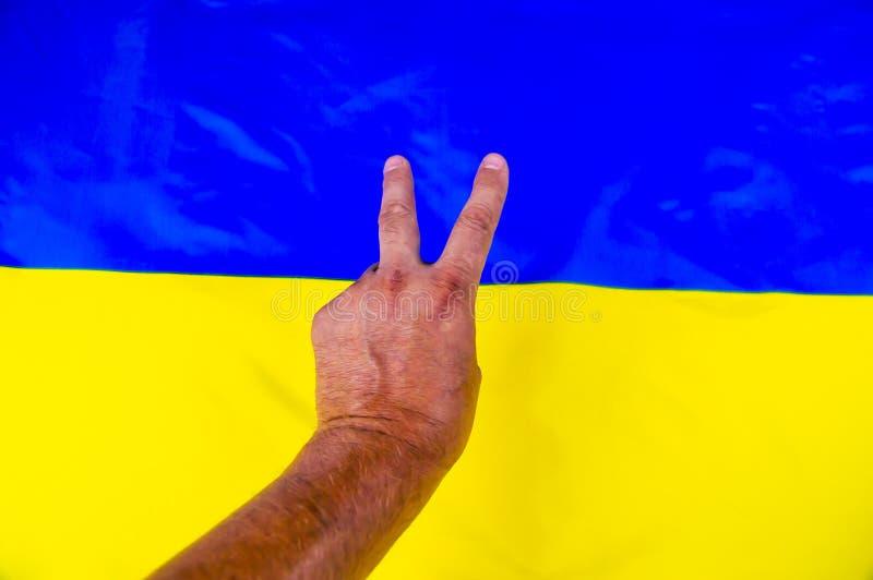 Жест рукой победы на предпосылке украинского флага - Дне независимости стоковое фото