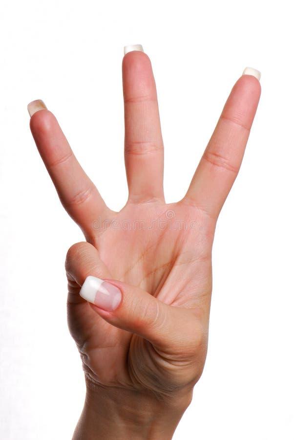 жест 3 стоковые изображения rf