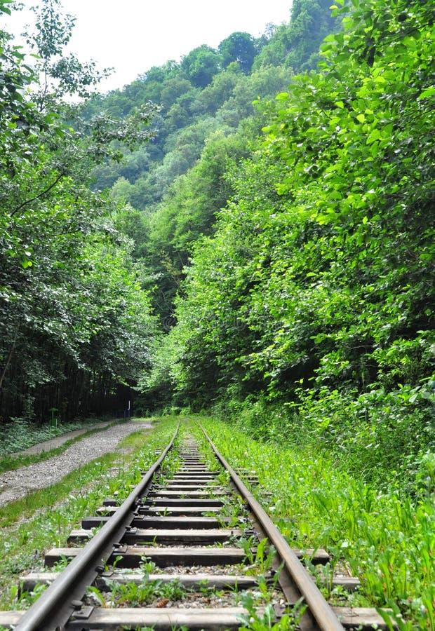Железная дорога в ущелье Гуама на одной стороне утесов, другом глубокая пропасть и бурлить быстрое река стоковое фото