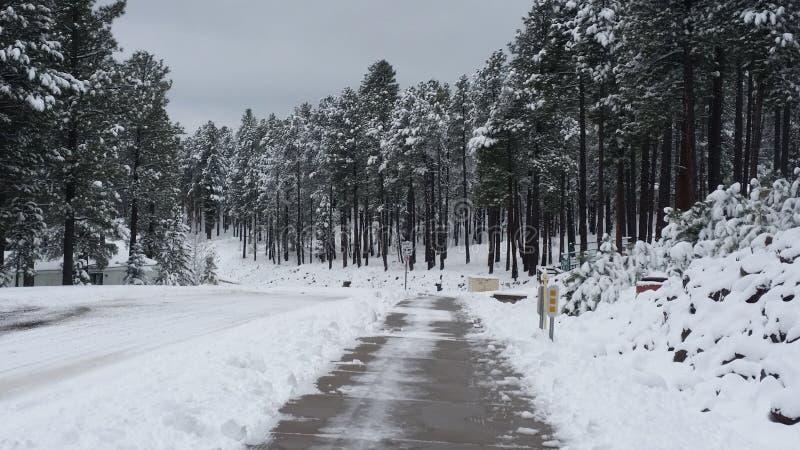 Железная дорога скачет дорога в зиме стоковое изображение