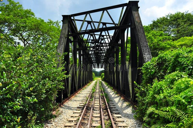 Железнодорожный мост на Bukit Timah стоковые фотографии rf