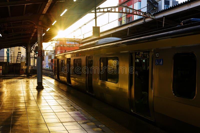 Желтая линия поезд МЛАДШЕГО, токио стоковое изображение