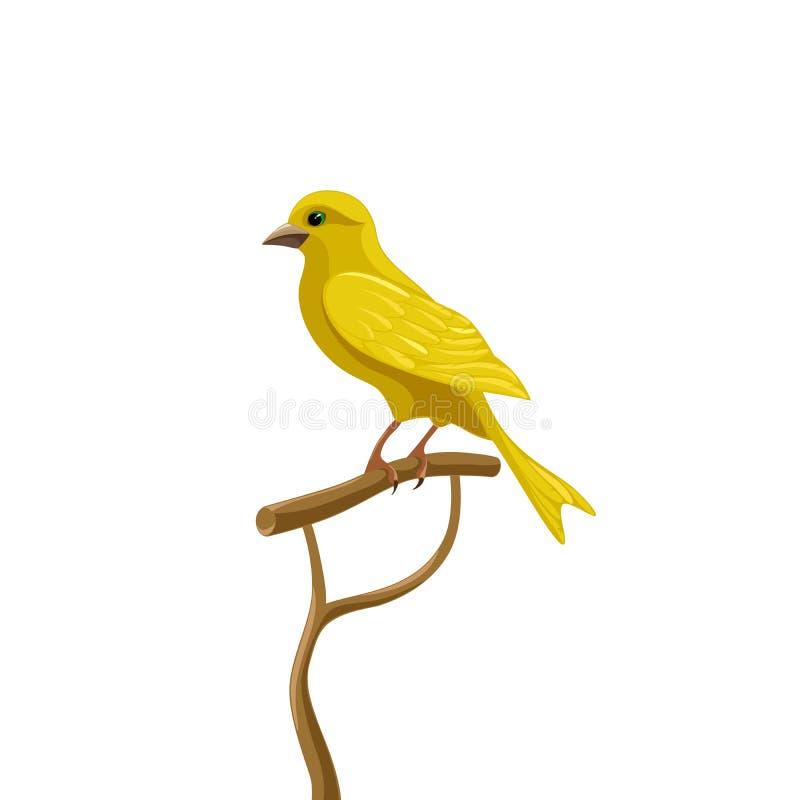 Желтая канерейка иллюстрация штока