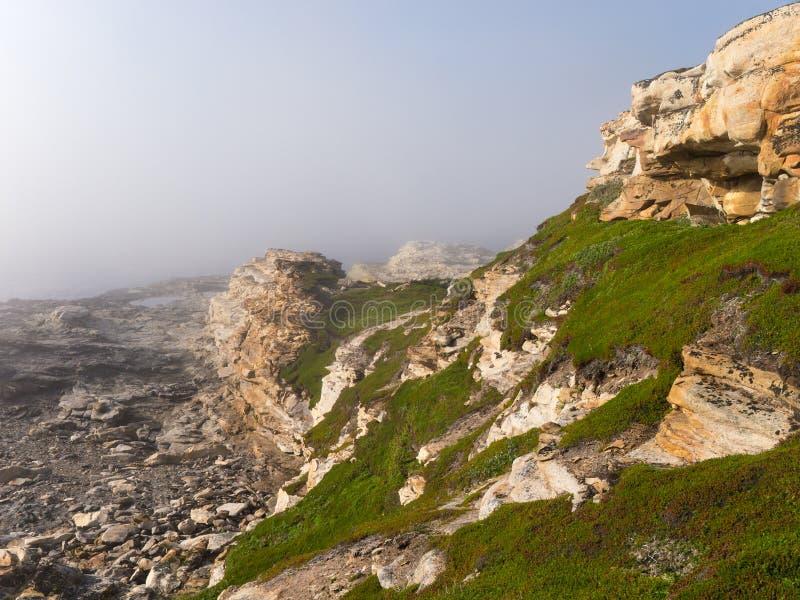 Желтая скала в тумане стоковое фото rf