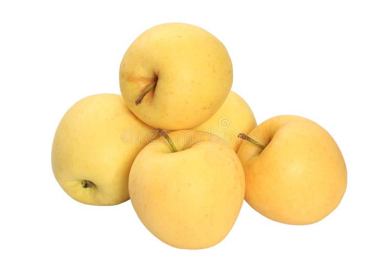 Желтое золотое яблоко стоковое изображение