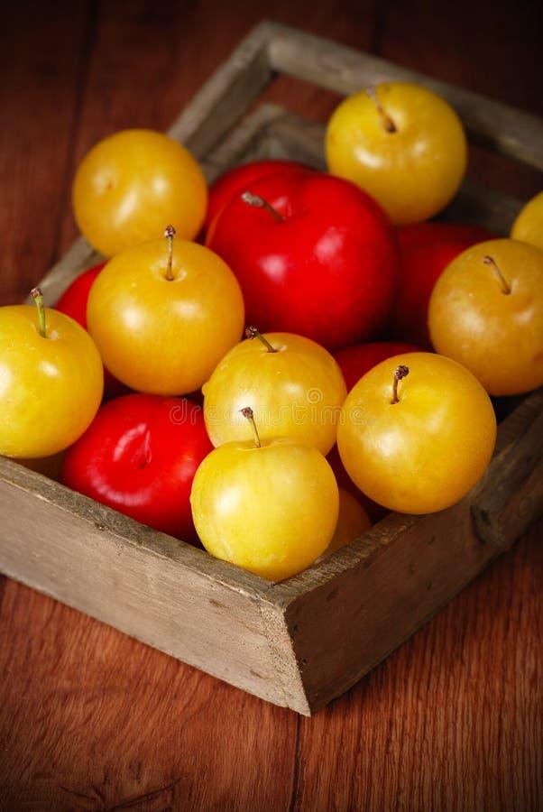 Желтые и красные сливы в шаре стоковые фотографии rf
