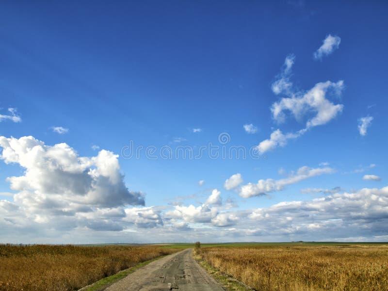 Желтые поля под драматическим голубым небом с белыми облаками близрасположенными колония древнегреческия Histria, на берегах Чёрн стоковое изображение rf