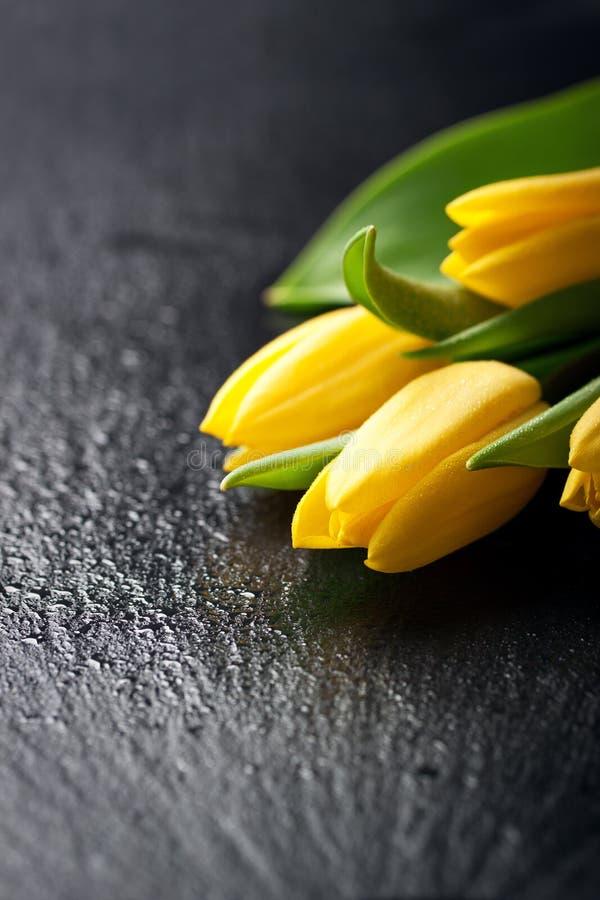 Желтые тюльпаны на черной каменной предпосылке с капельками воды стоковое фото