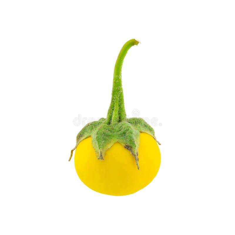 Желтый изолированный баклажан стоковая фотография rf