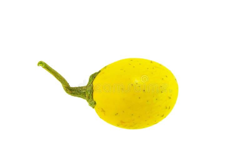 Желтый изолированный баклажан стоковые фото