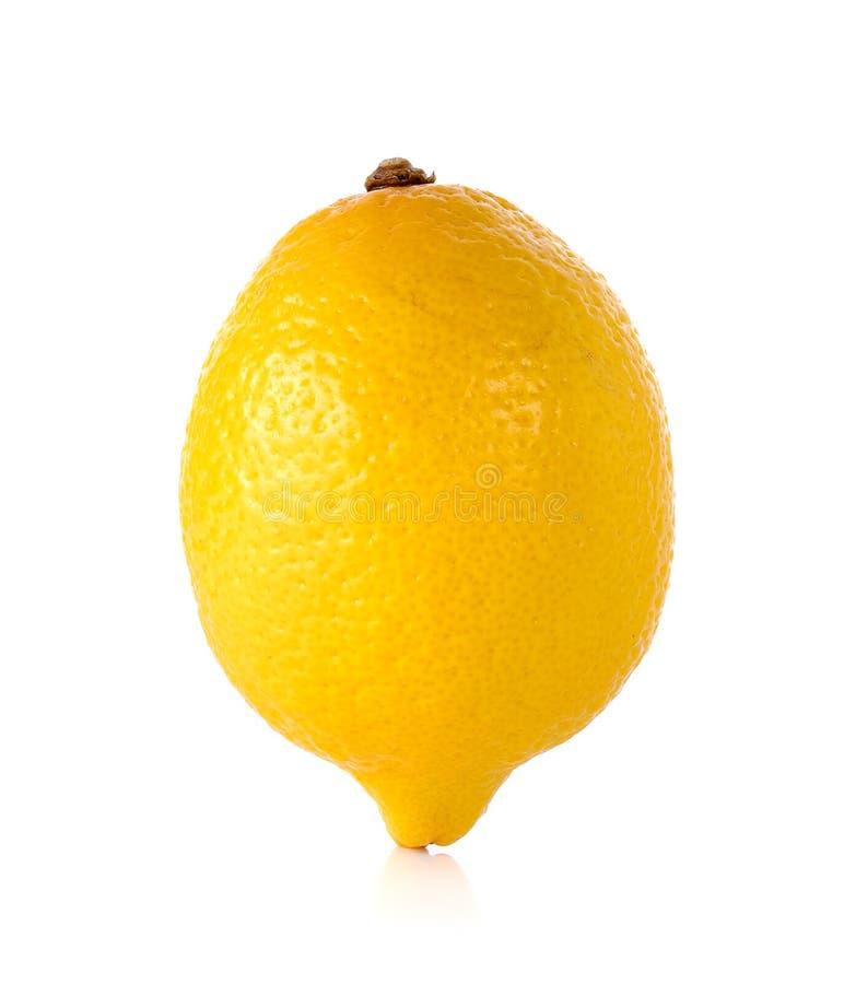 Желтый лимон на белой предпосылке стоковое изображение