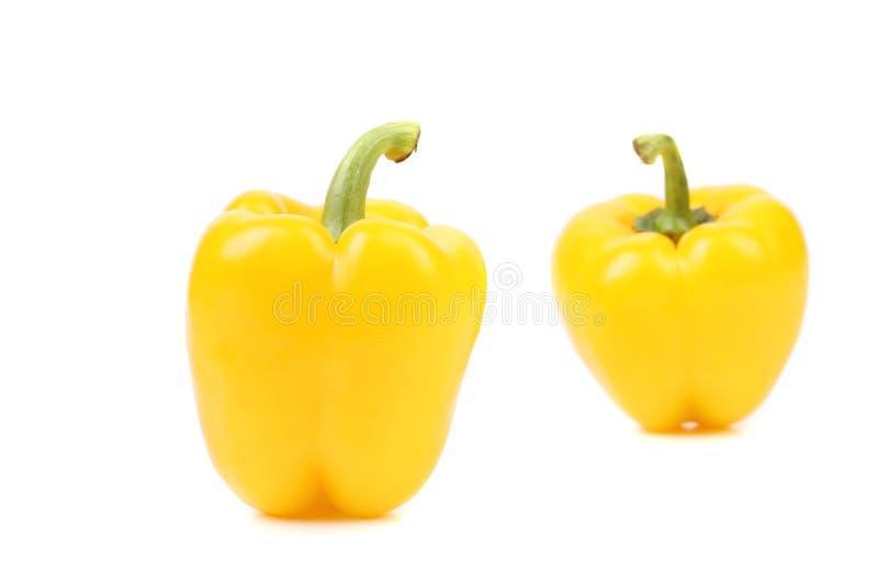 Желтый перец стоковые фото
