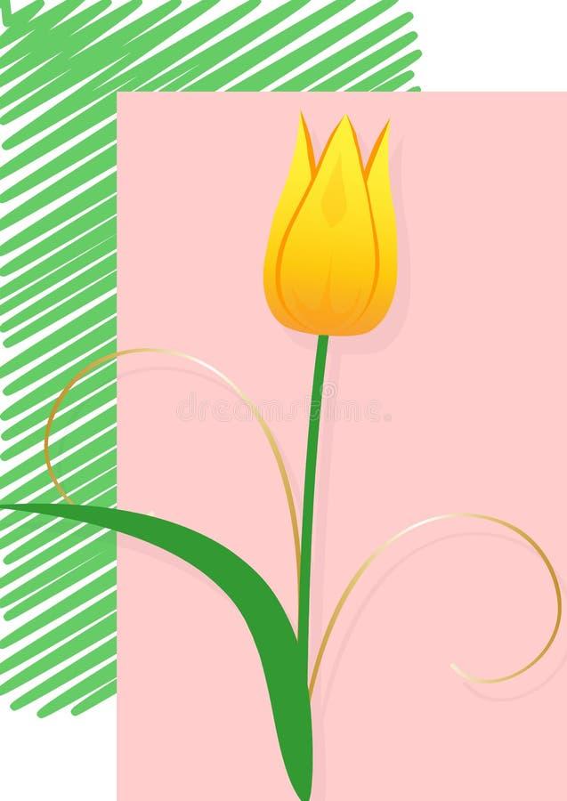 Желтый тюльпан, открытка стоковая фотография