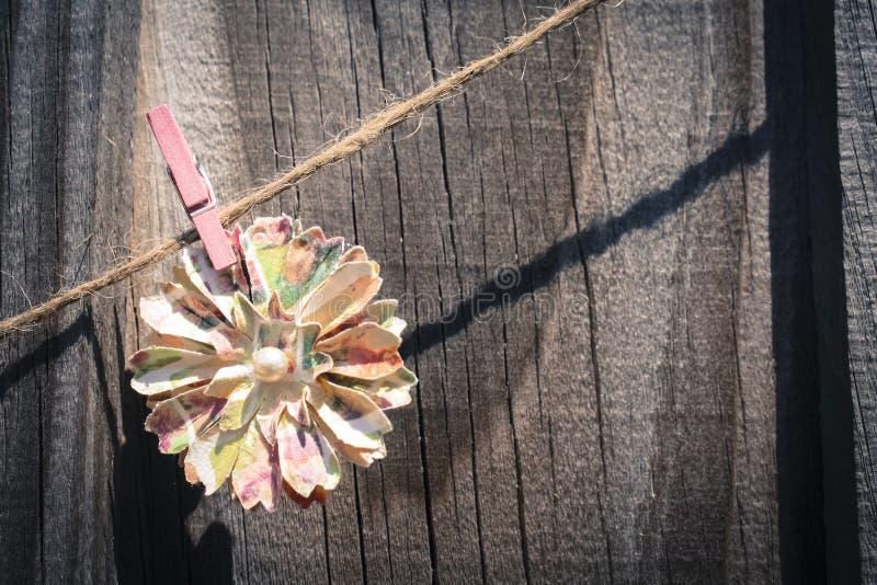 Download Желтый цветок стоковое фото. изображение насчитывающей сельско - 40585420