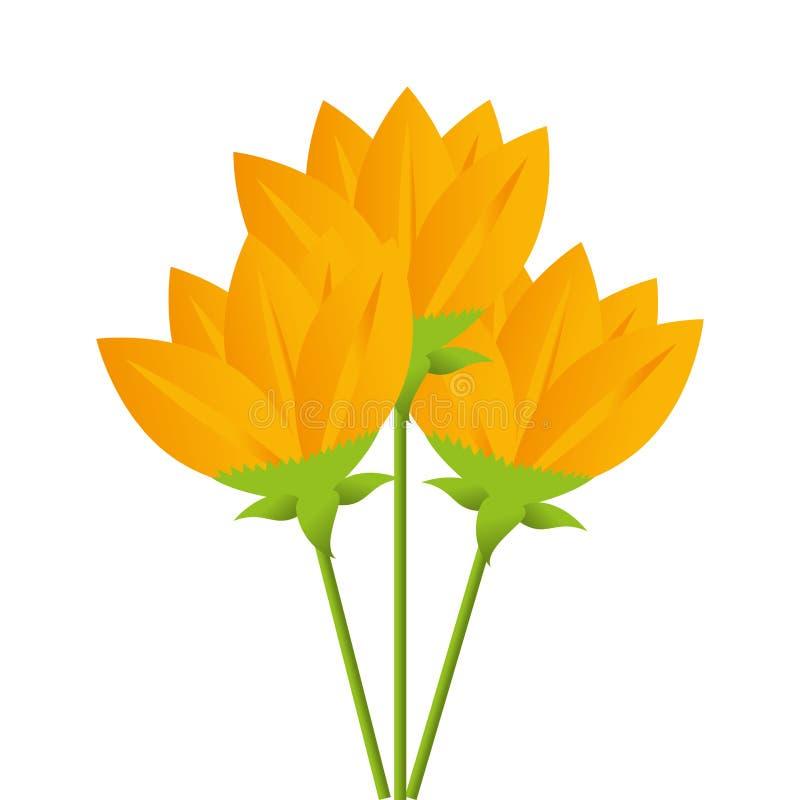 Желтый цвет цветет дизайн букета флористический иллюстрация штока