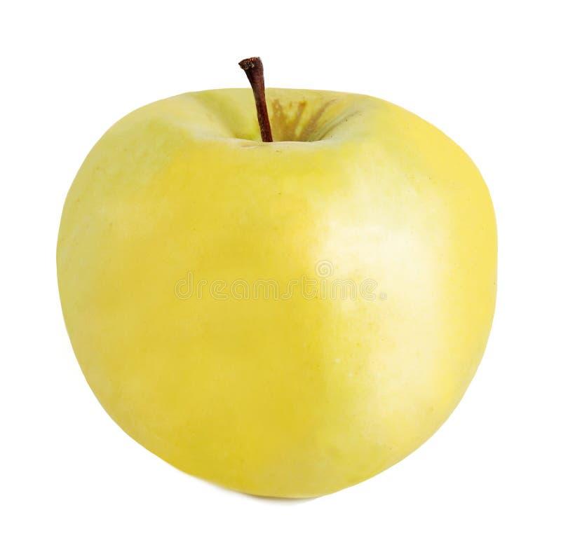 желтый цвет яблока зрелый стоковые фото