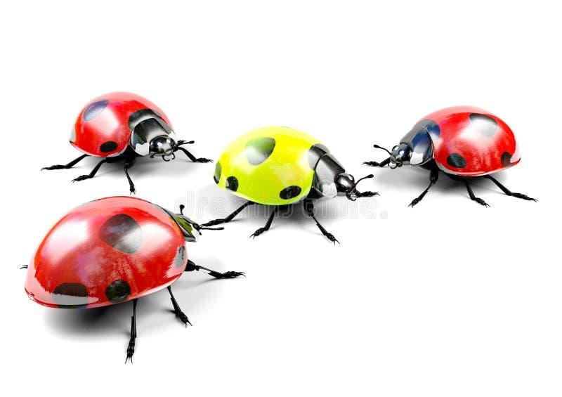 Желтый ladybug среди группы в составе красные ladybugs стоковые фотографии rf