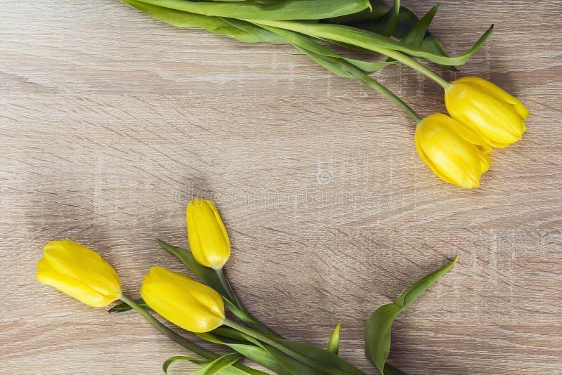 5 желтых тюльпанов на деревянной предпосылке и пустом космосе для te стоковое фото rf