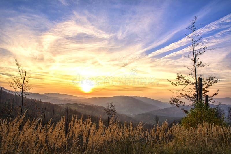 Живописная золотая осень в горах, унылое небо, заход солнца стоковое фото
