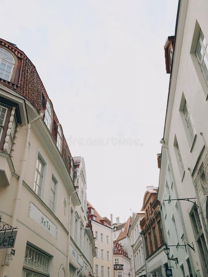 Живописное визирование Таллина стоковая фотография