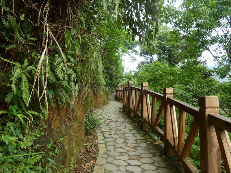 Живописное место, деревянная лестница для фарфора козл стоковое фото