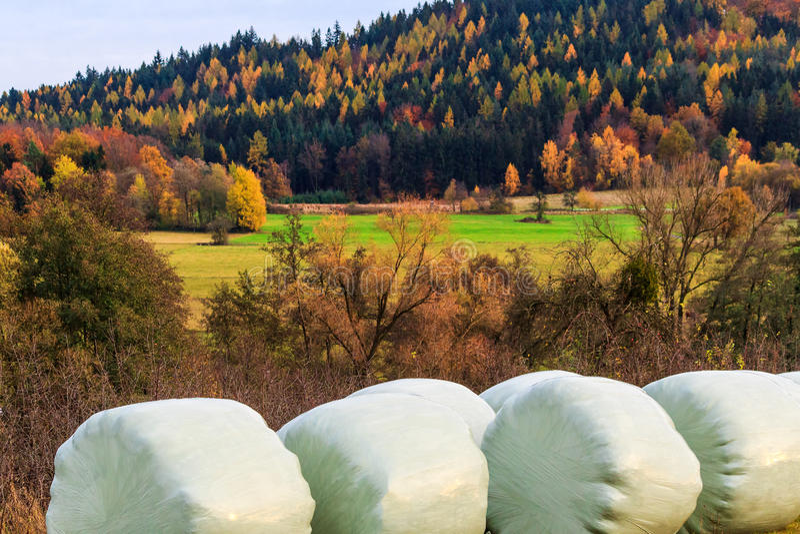 Живописный ландшафт осени с связками сена стоковая фотография