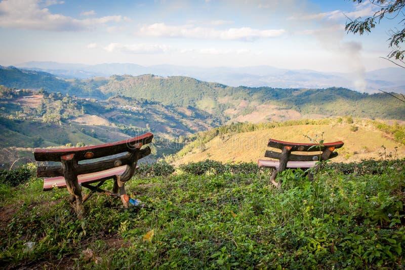Живописный взгляд к долине Doi Mae Salong с плантациями чая с деревянными скамьями на переднем плане стоковое фото