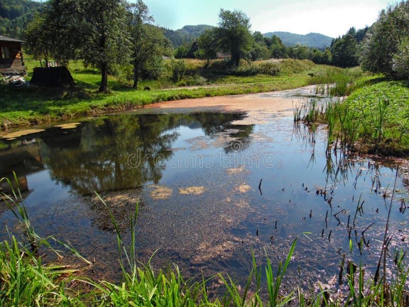 Живописный взгляд на озере горы стоковые изображения rf