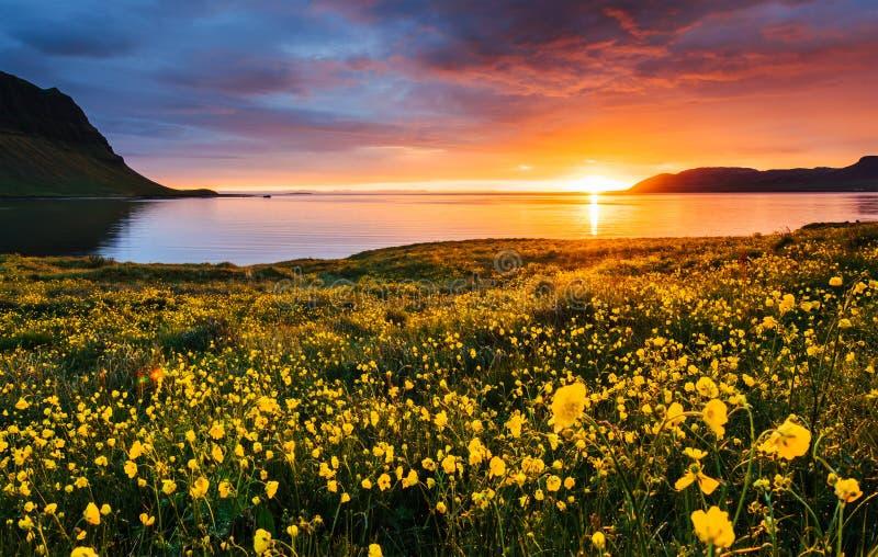 Живописный заход солнца над ландшафтами и водопадами Гора Kirkjufell, Исландия стоковые изображения rf