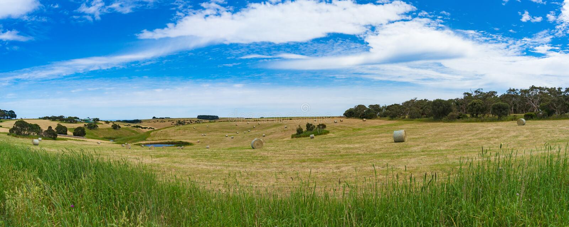 Живописный ландшафт панорамы поля сельской местности с соломой b стоковые изображения