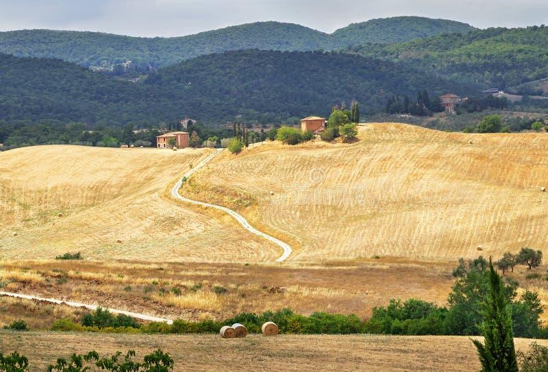 Живописный ландшафт Тосканы с Rolling Hills, долинами, солнечными полями, кипарисами, сельской дорогой, домами на холме стоковое фото rf