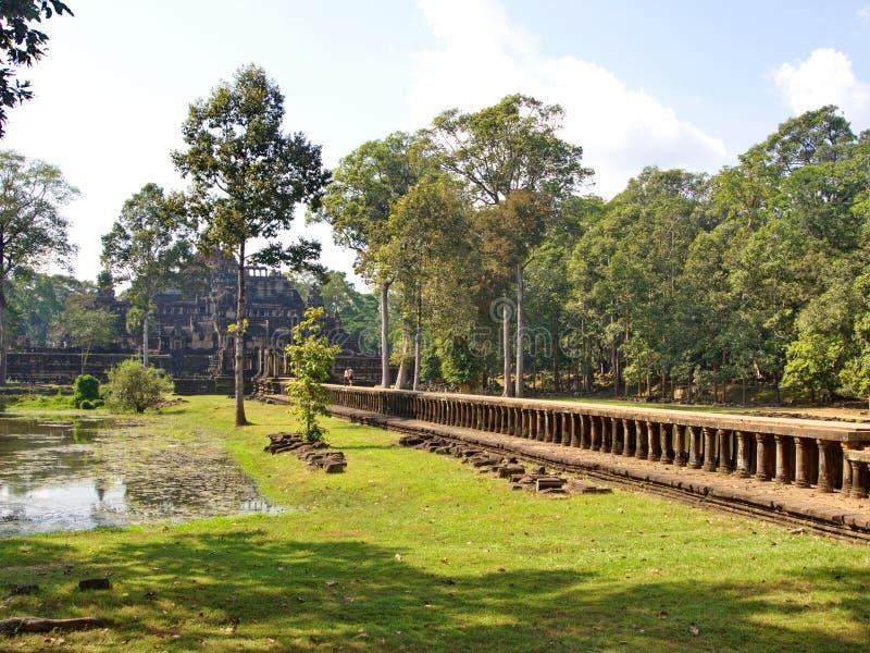 Животики Prohm руины виска перерастанные с деревьями на Angkor Wat во шве пожинают город, Камбоджу в 2012, 9-ое декабря стоковые изображения rf
