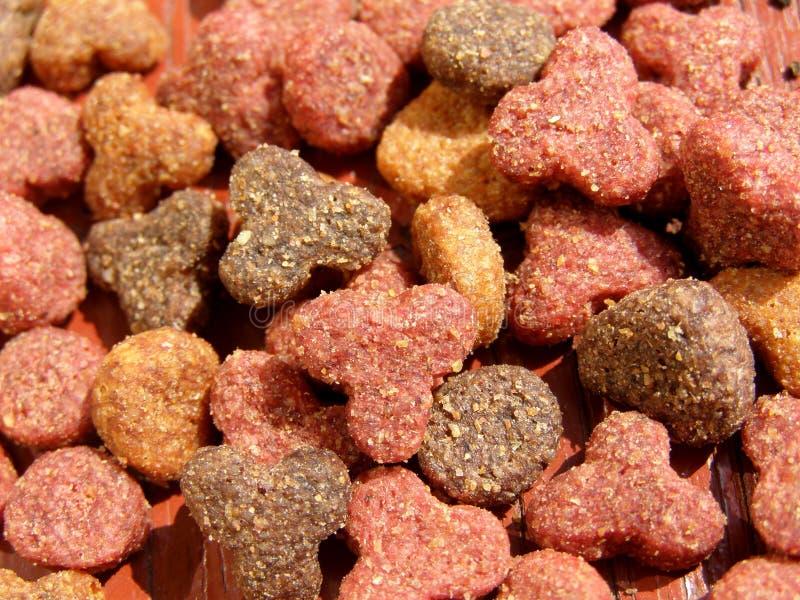 животная еда стоковое фото rf