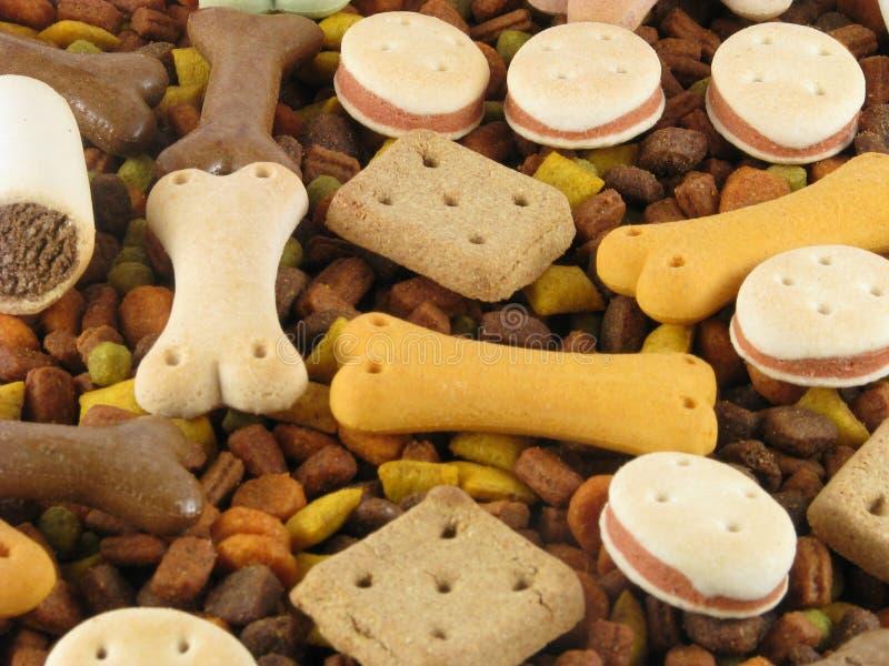 животная еда стоковые изображения