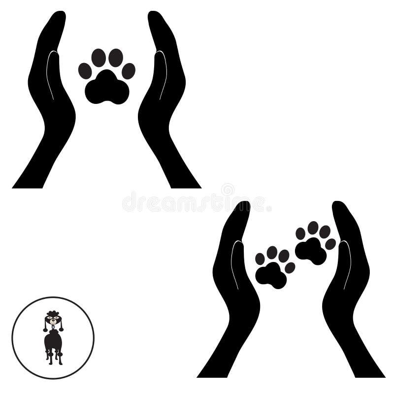 Животная лапка собаки в руке 1 людей стоковое изображение