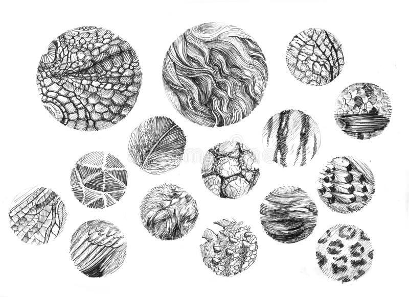 Животная текстура круглая бесплатная иллюстрация
