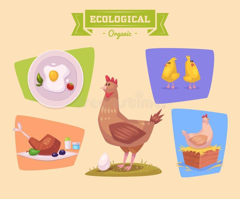 Животноводческая ферма и продукты сделанные из их Chiken иллюстрация штока