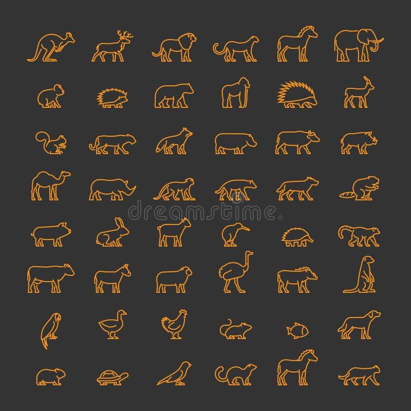 Животноводческие фермы линии любимчиков, одичалых и иллюстрация штока
