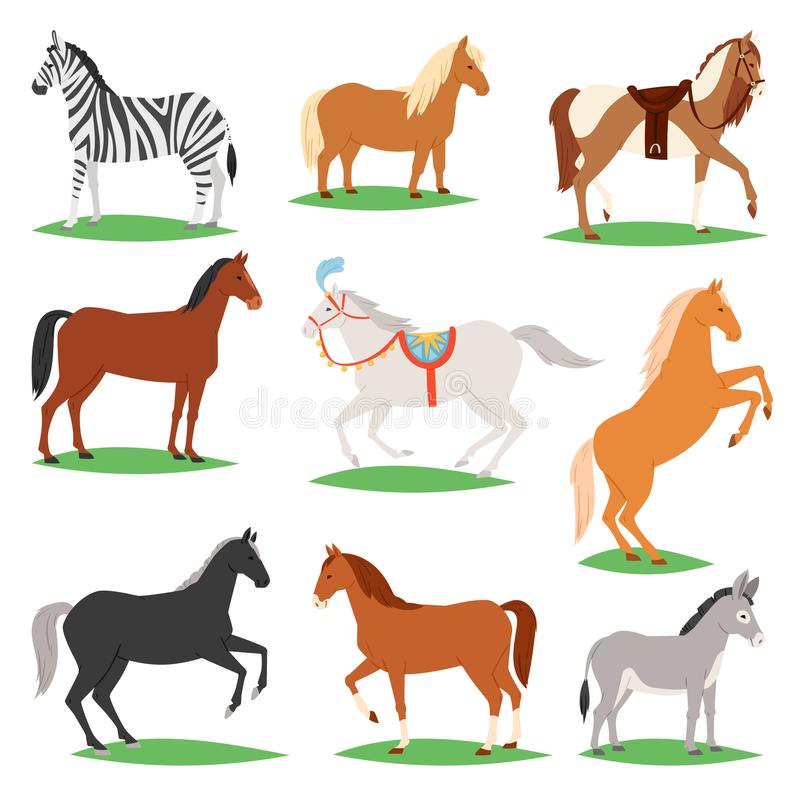 Животное вектора лошади комплекта лошад-размножения или конноспортивной и horsey или equine иллюстрации жеребца animalistic horsy бесплатная иллюстрация