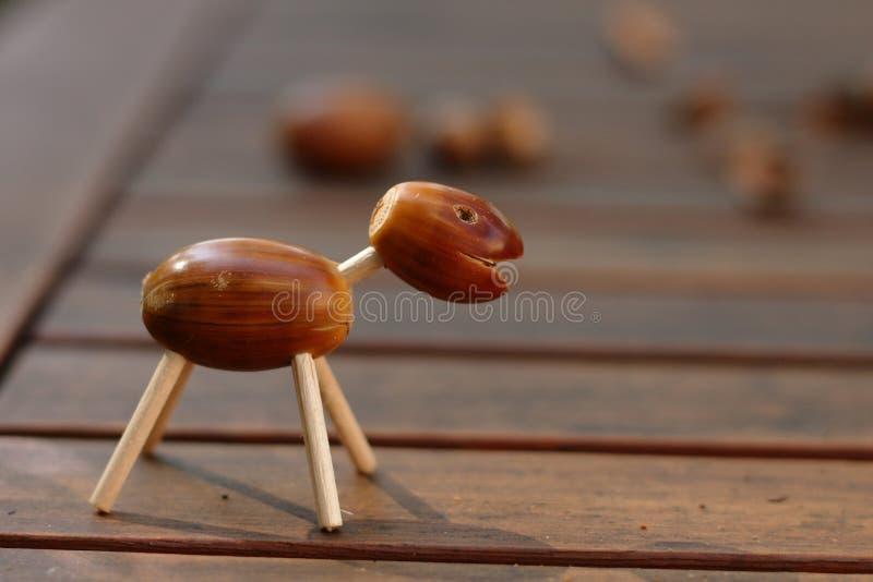 Животное жолудя стоковое изображение