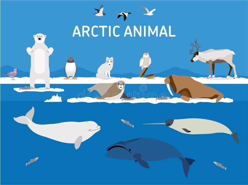 Животные арктики Плоская иллюстрация стиля иллюстрация вектора