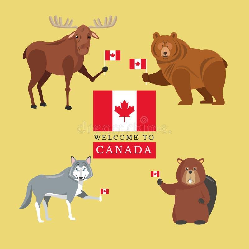 Животные леса Значок Канады Дизайн шаржа Illustrat Colorfull иллюстрация вектора