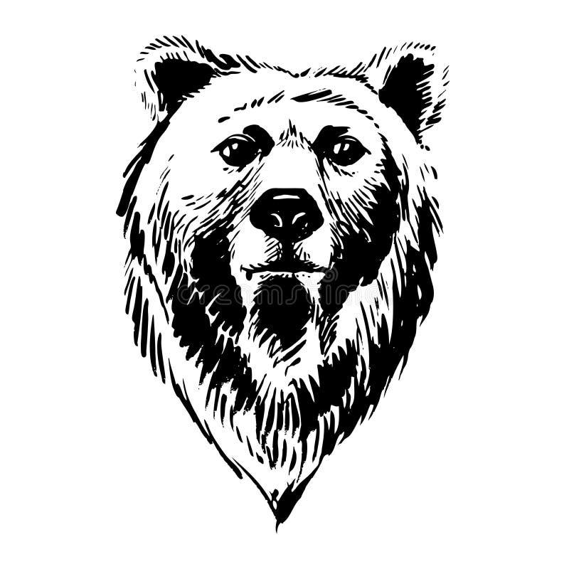 Животные леса отметки нарисованные вручную: медведь иллюстрация вектора